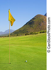 Golfer 45 - A flag and ball on a golf course