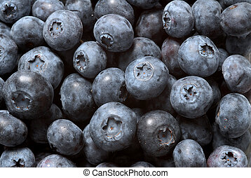 Blueberries - buch of blueberries