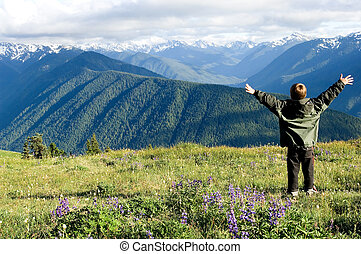 The whole world! - Hurricane ridge, Olympic national park,...