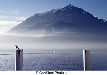 Lake of Varenna03 - seagull nearby the lake