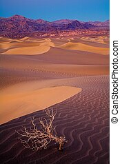Death Valley Dunes close to Stovepipe Wells