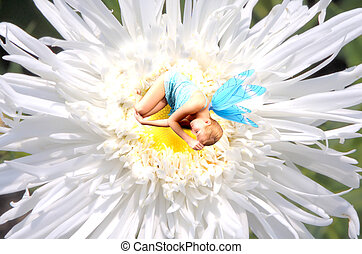Fairy World 8 - Fairy sleeping on a flower
