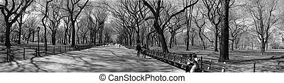 Slow New York Minute - New York doesn\\\\\\\'t look so fast...