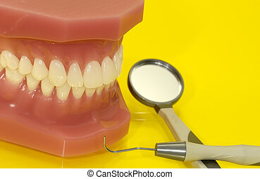 Dental Exam - Dental Related Items