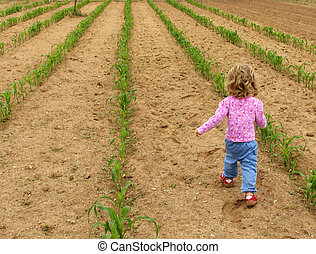 Child in garden - Little girl walking through a vegetable...
