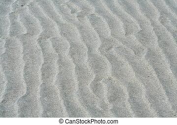 seashore tideland