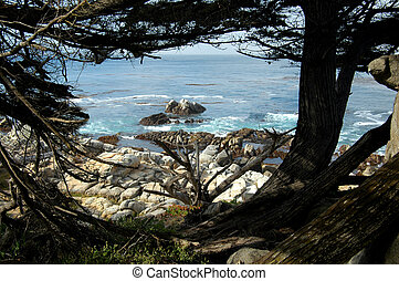Carmel By The Sea - The beautiful California coast