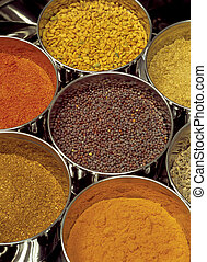 Masala box - Indian spices - Masala box containing...