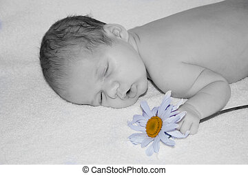 baby coloured blue - sleeping infant holding a flower