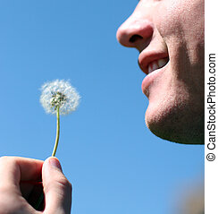 Man and dandelion - Potrait of man\\\'s face as he is about...