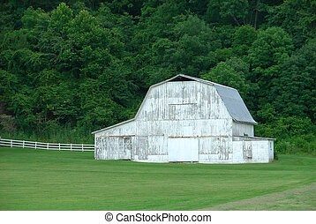 White Barn - A weathered white barn sits along the fenceline...