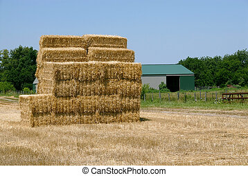 Hay Bale Stack - A stack of hay bales in the field of a farm...