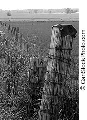 Follow the Fence - A fence at a farm in rual southern...