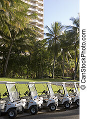 Golf carts line Hamilton Island - Golf carts fill the ocean...