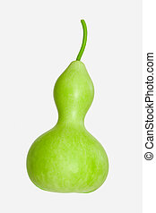 Calabash - Bottle Gourd - The light green Calabash or...