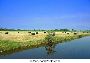 Picturesque scene, harvest season