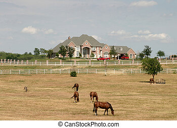 Grand Rural Estate With Horses 1 - Sprawling modern estate...