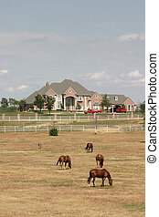Grand Rural Estate With Horses 2 - Sprawling modern estate...