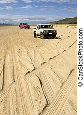 Four-wheel driving on Fraser Island - 4WD tracks on beach...