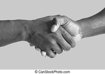 gris, apretón de manos, negro
