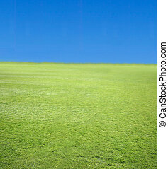 Blue sky and green grass 2 - Blue sky and green grass