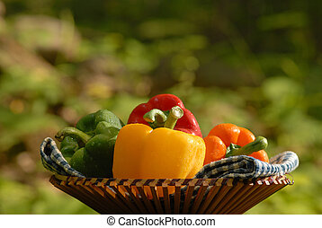 4 Peppers - vegetables in a basket