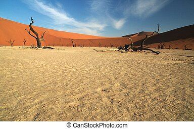 Open wide at deadvle - The famous dead trees of deadvlei in...