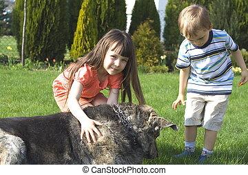 crianças, cão