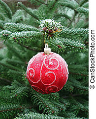 Red Christmas ball hanging on a Christmas tree with lots of...