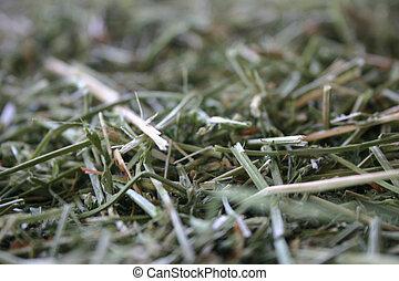 Green stuff - weeds