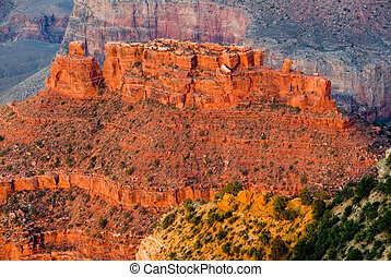 Grand Canyon - Beautiful landscape of the Grand Canyon