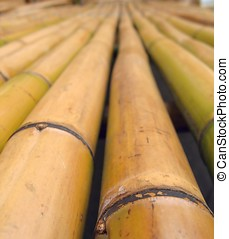 Bamboo Poles - -- a common construction material in Asia