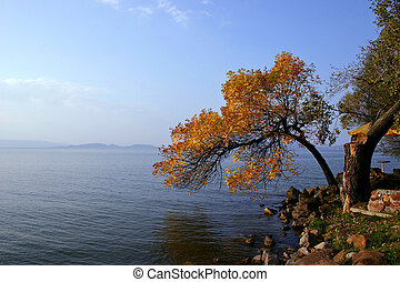 Balaton - Lake Balaton in autumn
