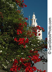flowering tree and greek church - flowers with beautiful...