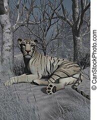 White Tiger - 3D Animal