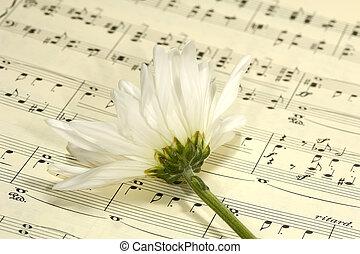 Sheetmusic - Flower on Sheetmusic
