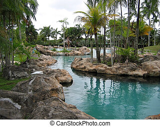 swimming pool - pool side landscaping