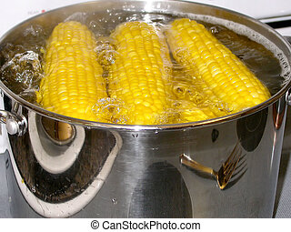 Corn on the cob boiling in a pot of water