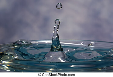 Water Drop - Photo of a Water Drop