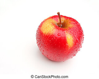 Temptation of Eve - Fresh red and yellow apple with drops on...