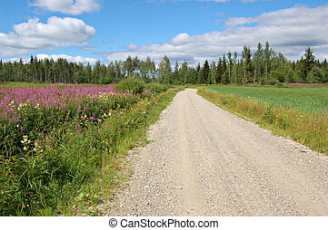 Finnish backroad - Road in rural Finland