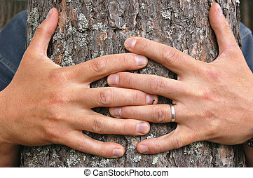 Hug a tree - Hands hugging a pine tree