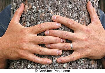 Abrazo, árbol
