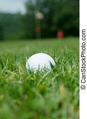 Golf-ball near the green - Golf-ball partly hidden just...