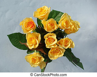 yellow roses - Bunch of yellow roses shot in sun light with...