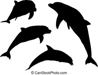 Dolphin silhouettes - Various silhouettes of dolphins