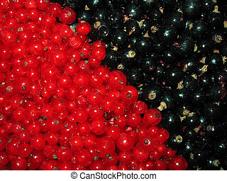 Berries - Currants