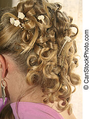 Fancy Hairdo - A womens fancy hair do