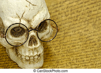 Skull - Photo of a Skull on a Parchment