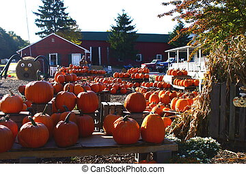 Hometown Halloween - Hometown USA autumn harvest market